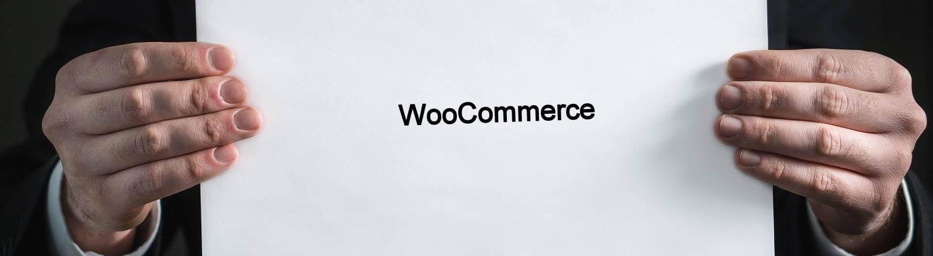 Warum man Woocommerce und WordPress als Basis für einen erfolgreichen Onlineshop benutzen sollte - Webdesign Hechthausen
