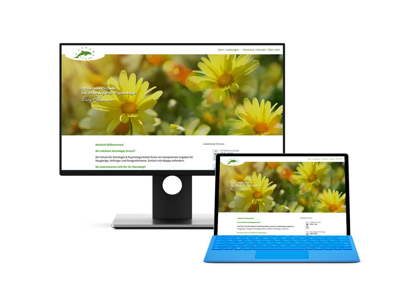 Webdesign Hechthausen Webseite Homepage erstellen warten pflegen
