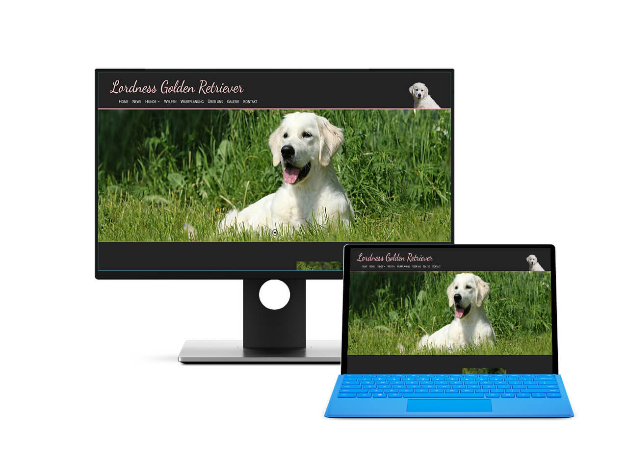 Webdesign Hechthausen -  Website für eine Hundezucht Darstellung der Seite auf einem Screenshot